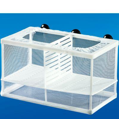 Papillon Breedy Netbox L Ablaichbox