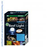 Dennerle Nano Marinus ReefLight 2:2 Aufsteckleuchte 24W